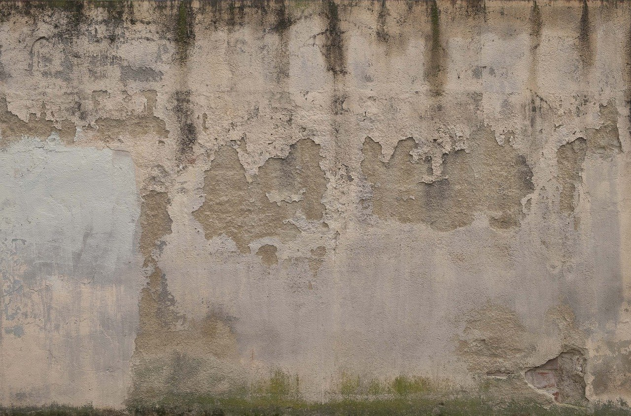 humidite-mur